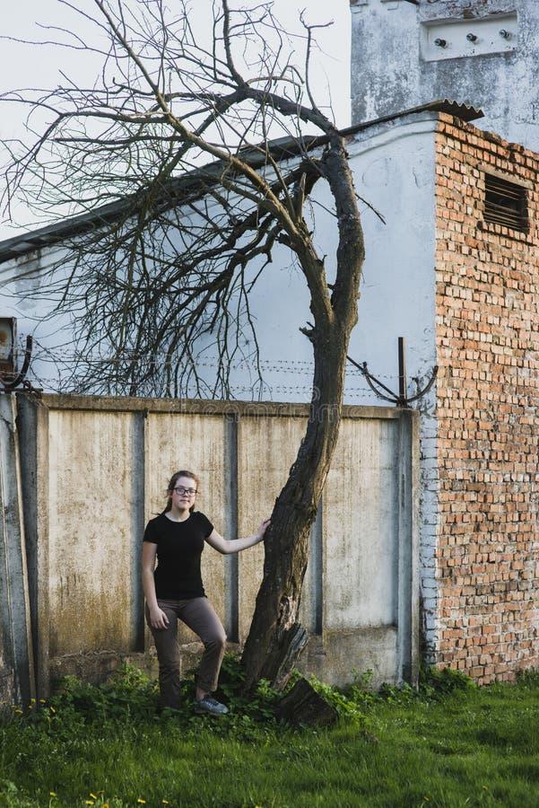 Девушка около нечестного дерева стоковые фотографии rf