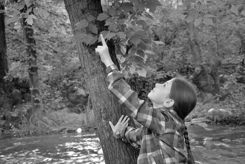 Девушка около реки леса стоковая фотография