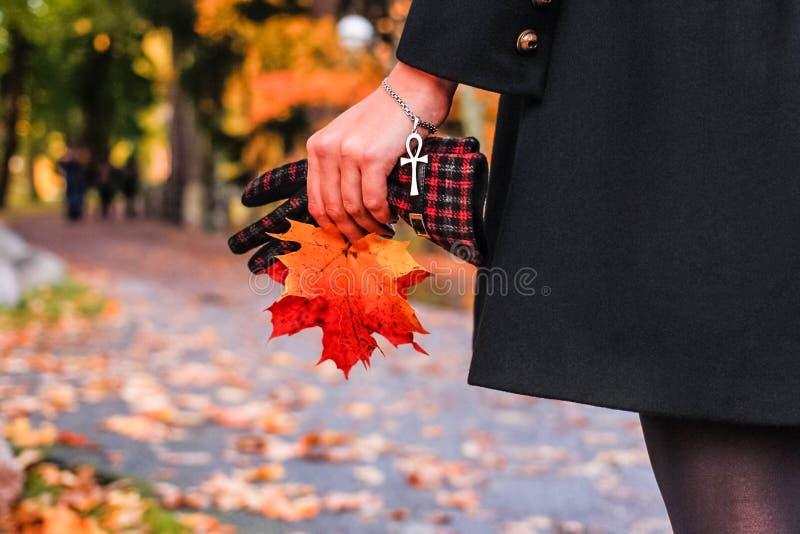 Девушка осени листья, сухая трава Ankh, коптский крест стоковые фотографии rf