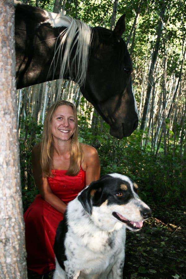 Девушка лошади стоковая фотография rf