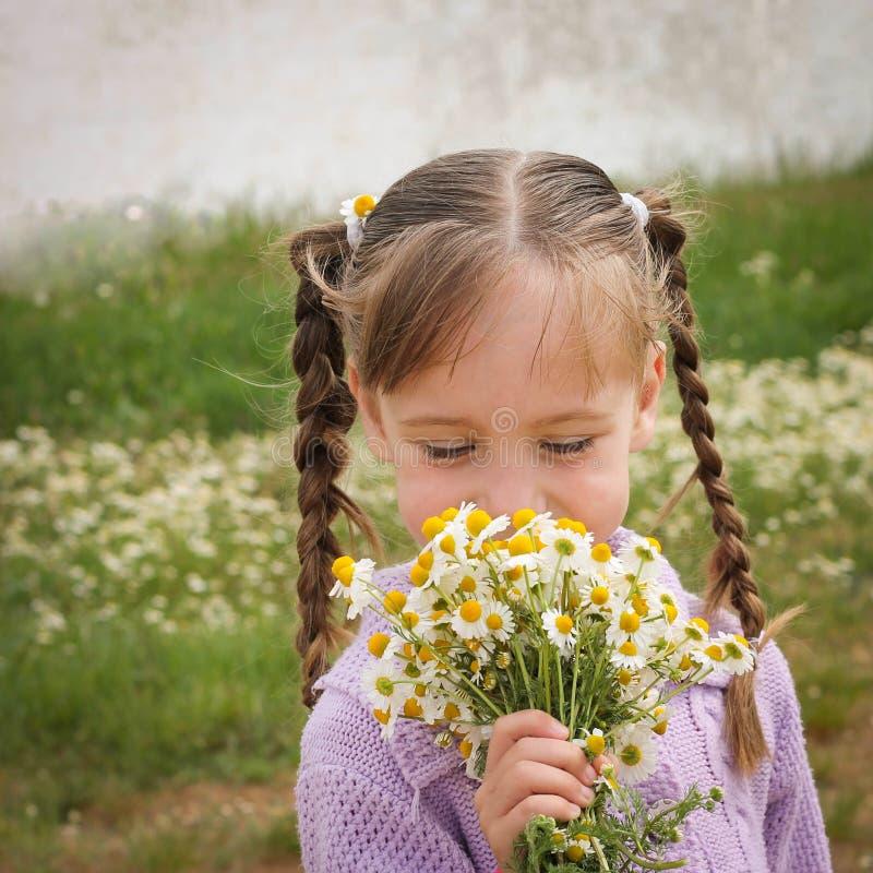 Девушка пахнет стоцветом стоковое фото