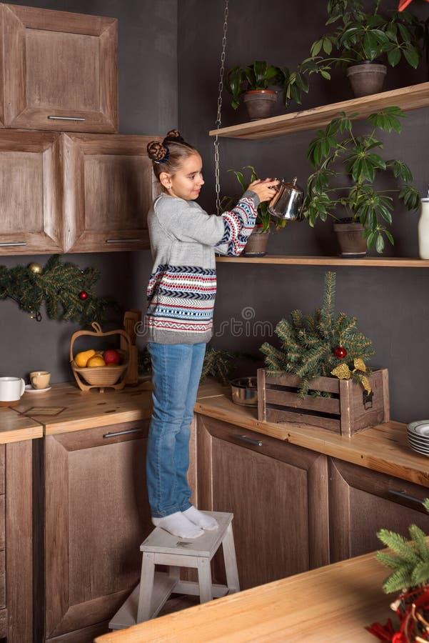 Девушка подростка в свитере и стойках джинсов на табуретке и моча цветки на верхних полках кухни в вечере стоковая фотография