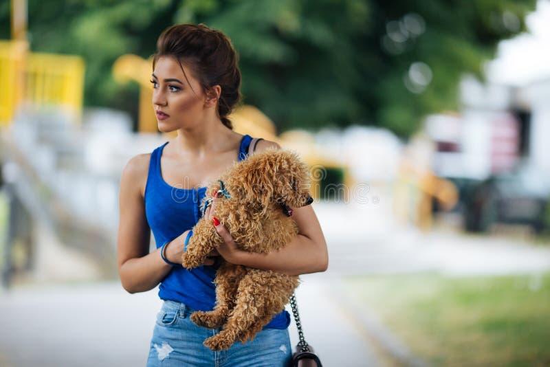 Девушка подростка с красным пуделем стоковое фото rf