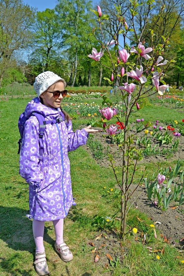 Девушка показывает на цвести магнолии Sulanzha в парке r стоковые изображения rf