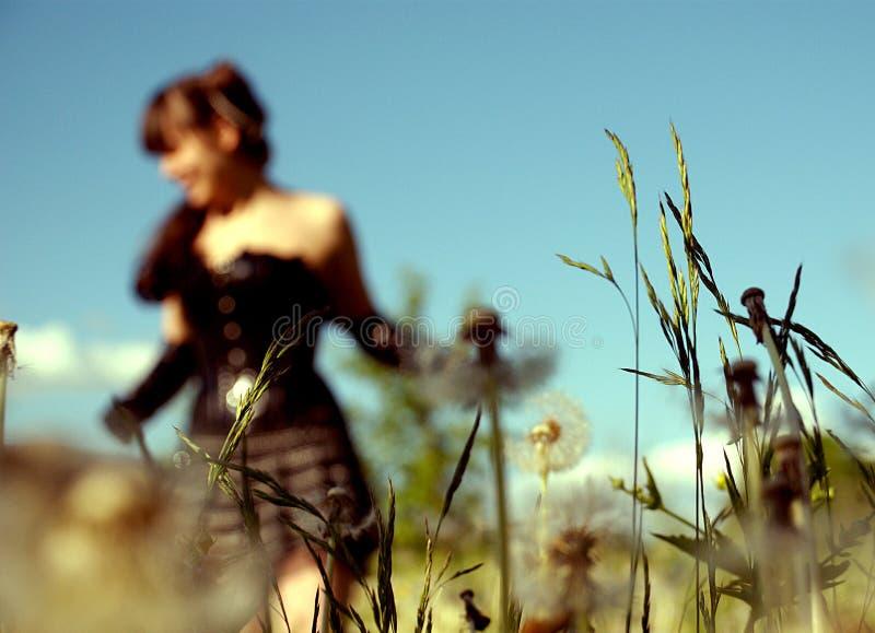 девушка поля стоковое фото rf