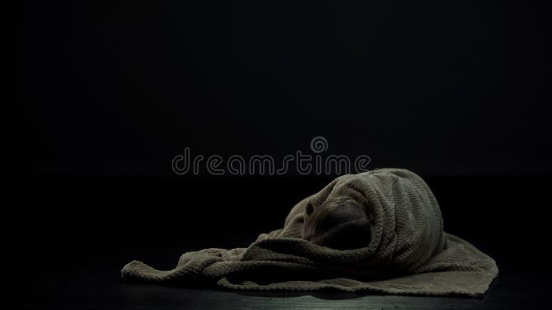 Девушка предусматриванная в шотландке лежа самостоятельно в темной комнате, социальной проблеме бездомного ребенка стоковое фото rf