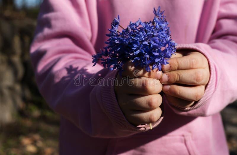 Девушка ребенка держа букет полевых цветков стоковые фотографии rf