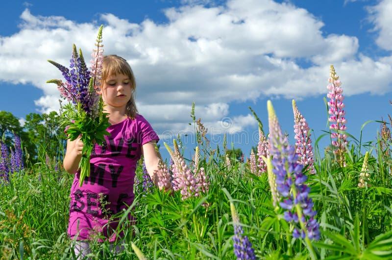 цветок благополучия фото и название