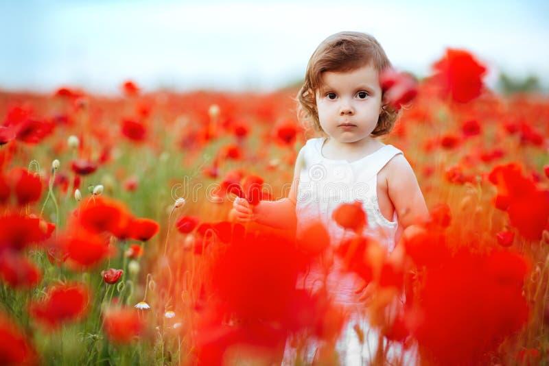 Девушка ребенка с букетом маков стоковые изображения rf