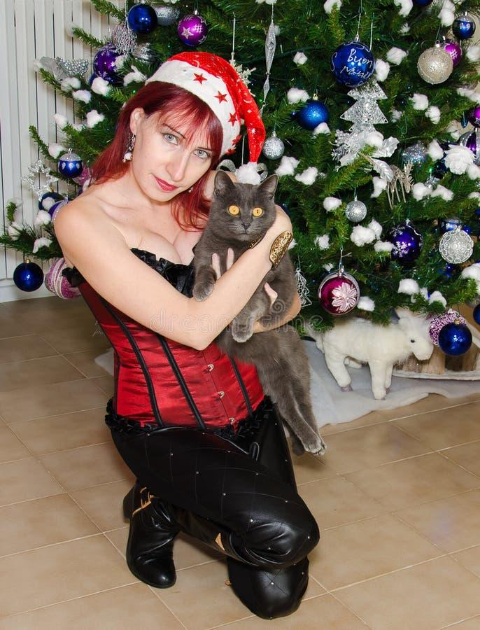 Девушка рождества с котом стоковая фотография