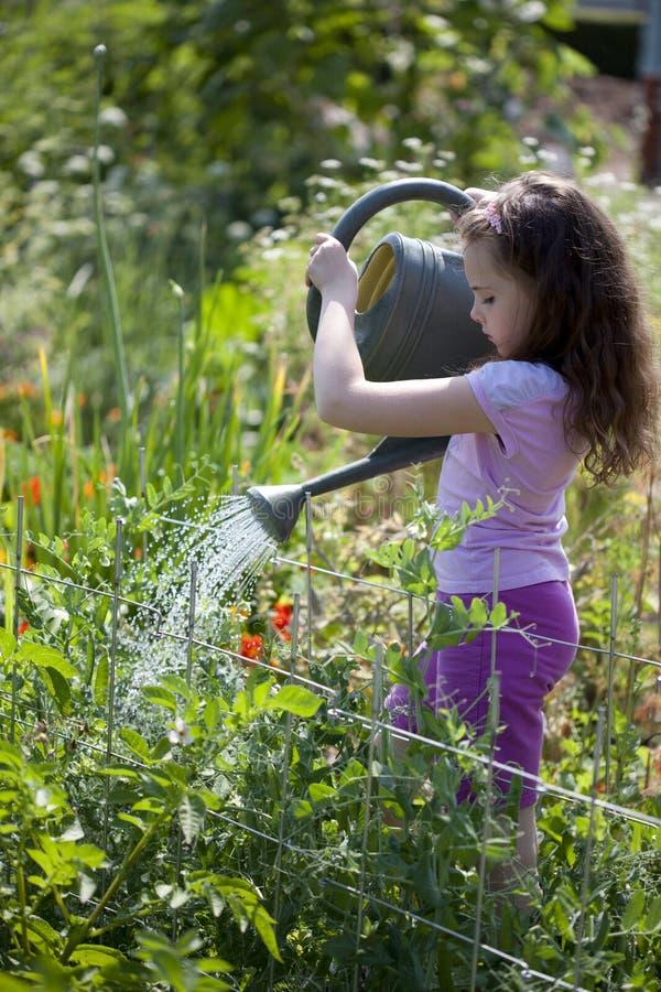Девушка сад стоковые фотографии rf