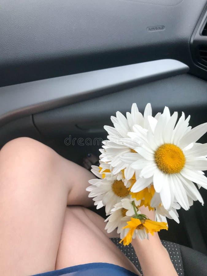 Картинках, картинки девушка с ромашками в машине