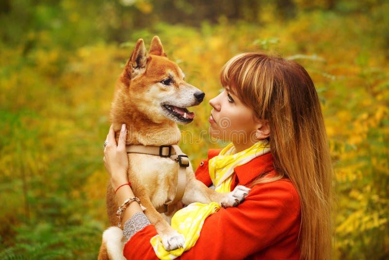 Девушка смотрит собаку Shiba Inu в парке осени стоковое изображение rf