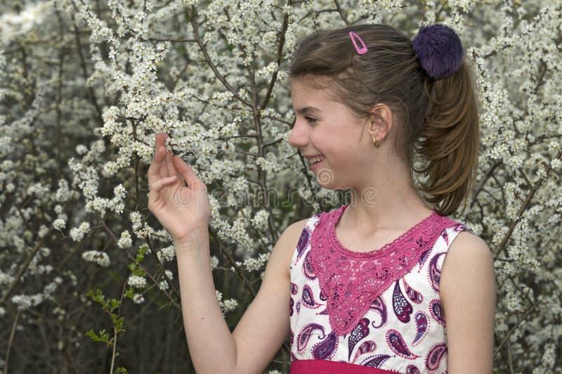 Девушка смотря и касаясь белые цветки стоковые фото