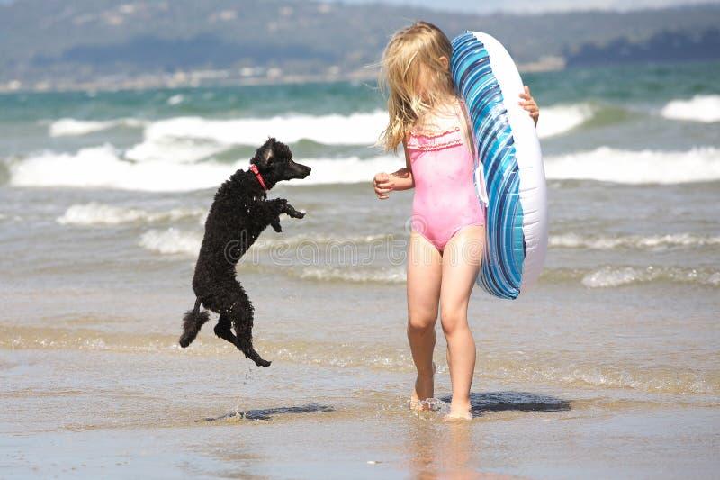 девушка собаки стоковое изображение rf