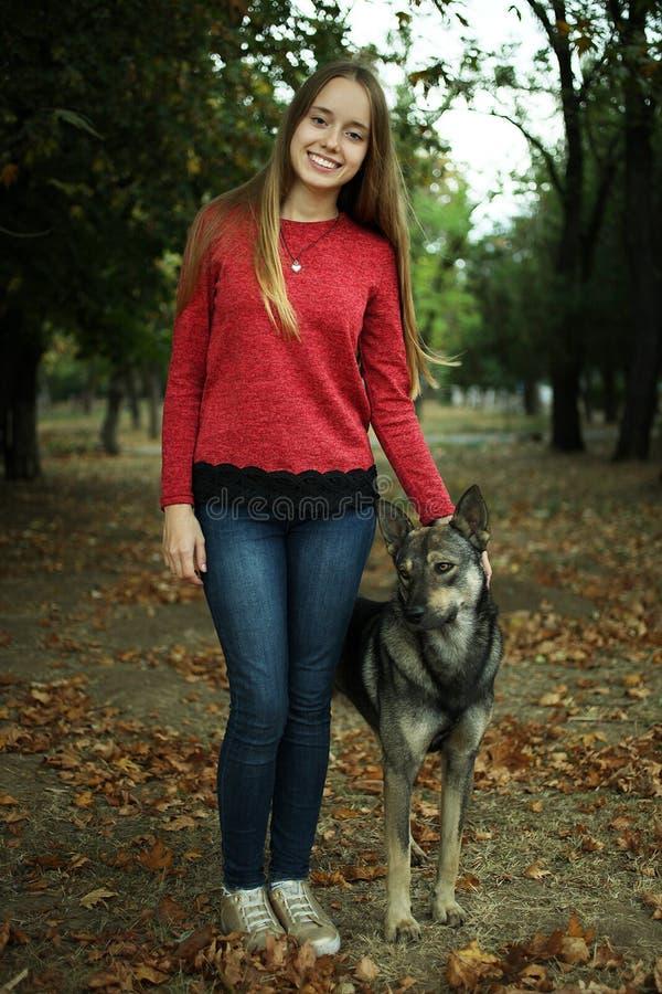 Девушка с бездомной собакой стоковое изображение rf