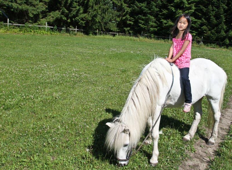Девушка с белой лошадью в Дании стоковое фото rf