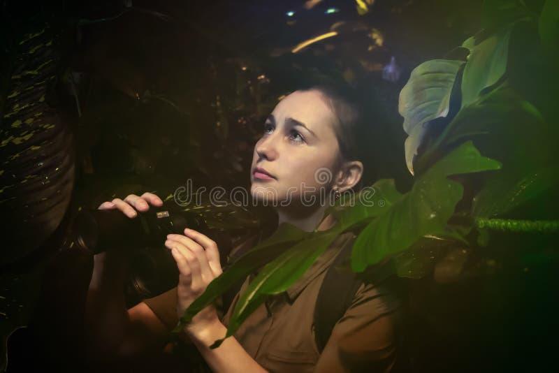 Девушка с биноклями в джунглях стоковое изображение rf