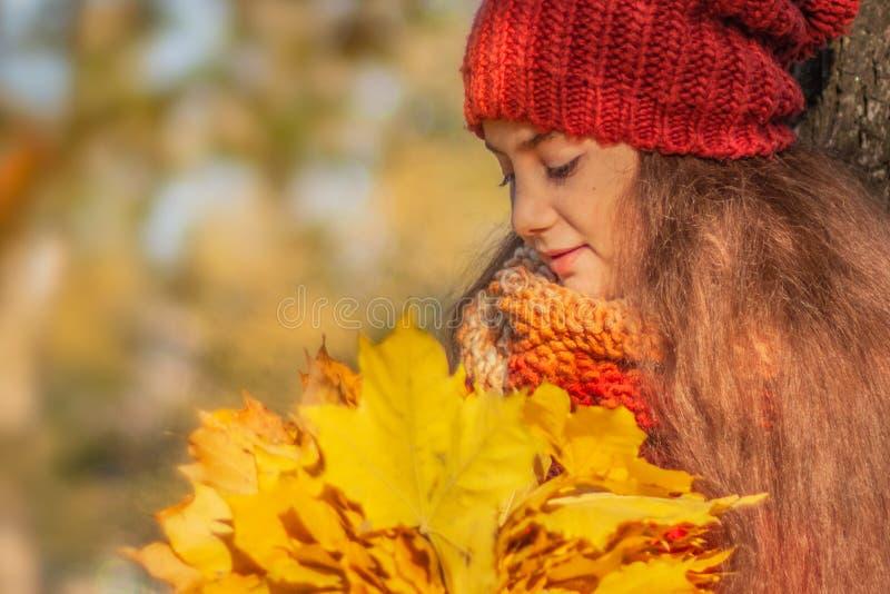 Девушка с букетом листьев в парке осени стоковые изображения rf