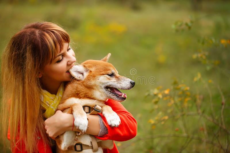 Девушка сдерживает собаку Shiba Inu уха в парке осени стоковая фотография