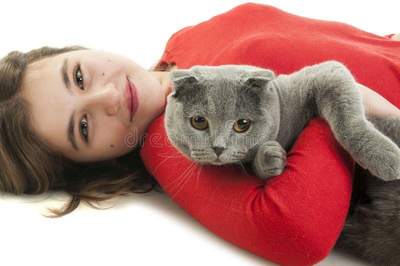 Девушка с котом створки Scottish стоковая фотография rf