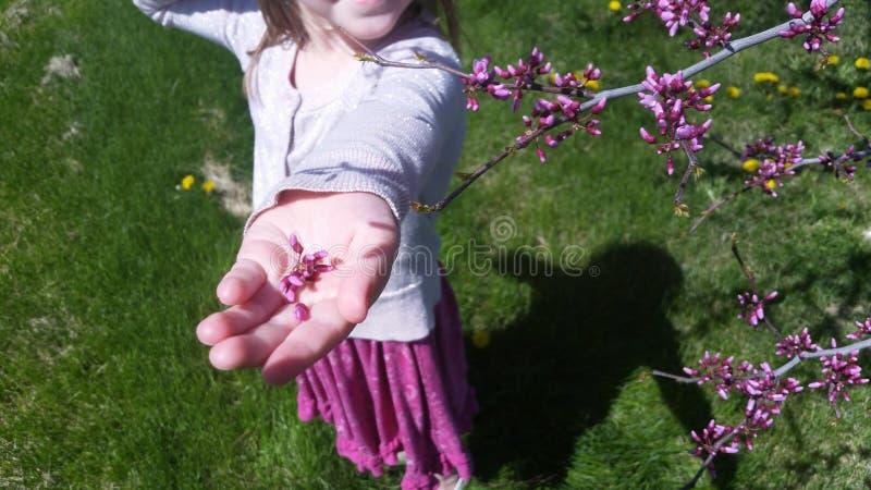 Девушка с цветениями стоковая фотография rf