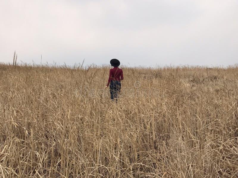 Девушка с шляпой в поле стоковая фотография