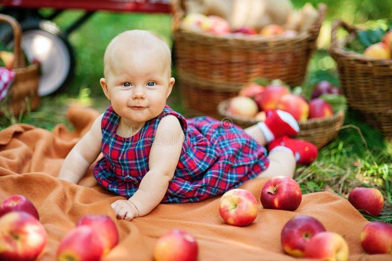 Девушка с Яблоком в яблоневом саде Красивая девушка есть органическое Яблоко в саде Принципиальная схема хлебоуборки Сад, еда мал стоковые изображения rf