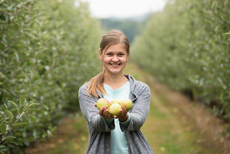 Девушка с яблоками стоковые фото