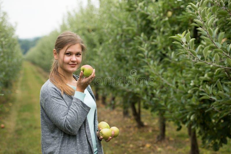 Девушка с яблоками стоковое изображение