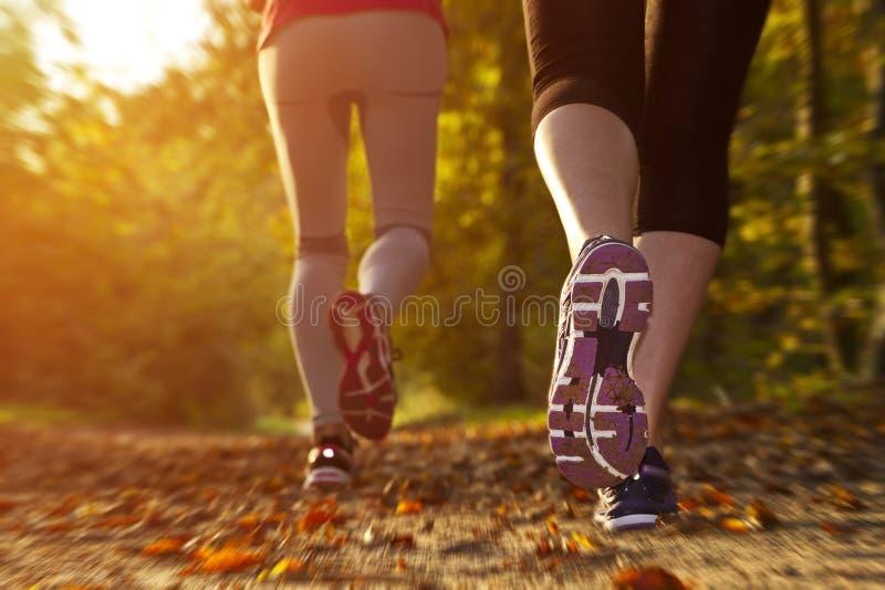 Девушка фитнеса бежать на заходе солнца иллюстрация штока