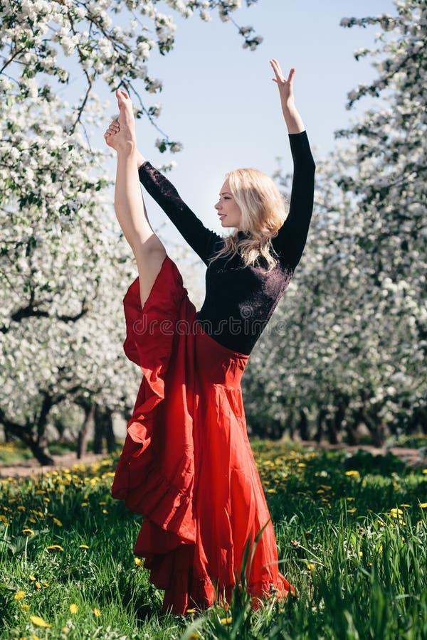 Девушка фламенко белокурая стоковое изображение rf