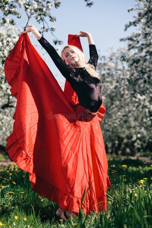 Девушка фламенко белокурая стоковая фотография rf