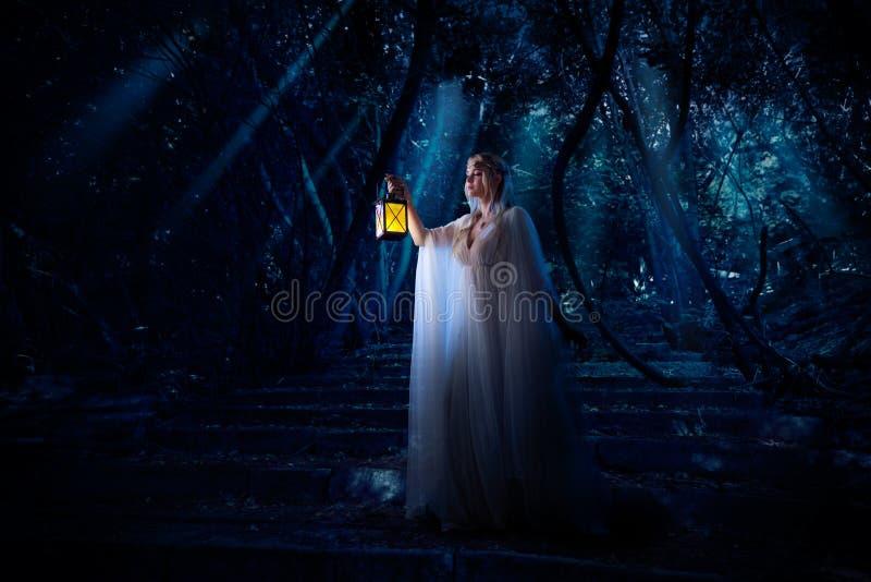 Девушка эльфа в версии леса ночи стоковые фото