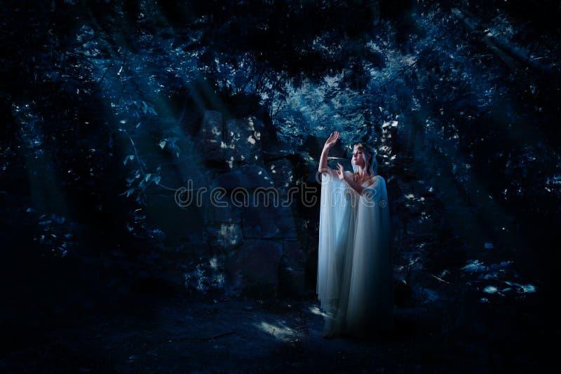 Девушка эльфа в версии леса ночи стоковые изображения