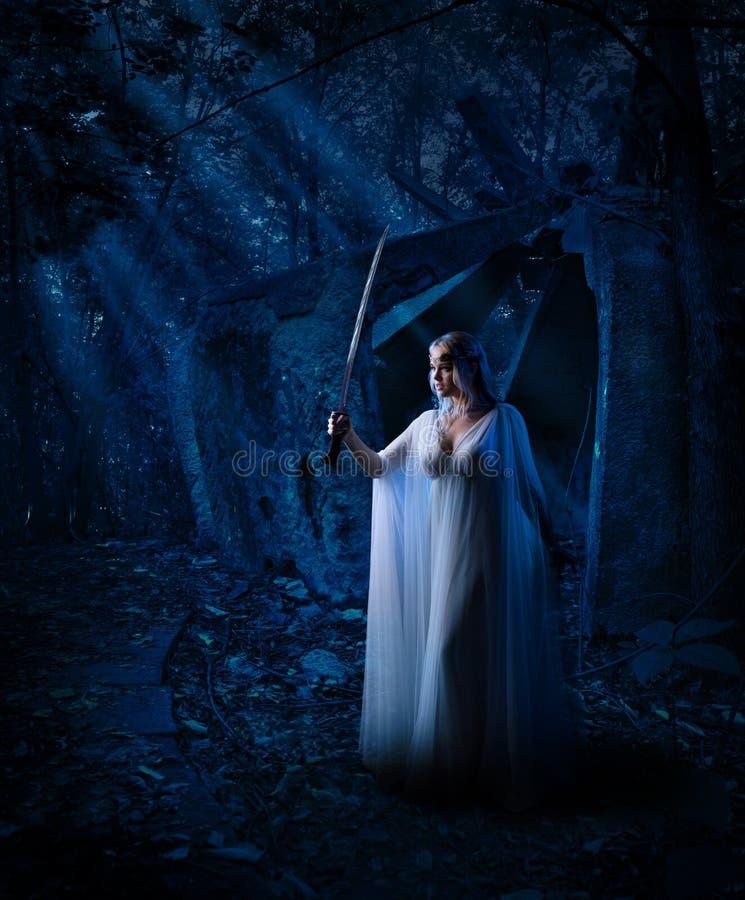 Девушка эльфа в лесе ночи стоковое фото rf