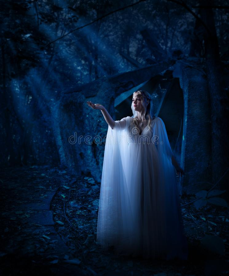 Девушка эльфа в лесе ночи стоковые фото