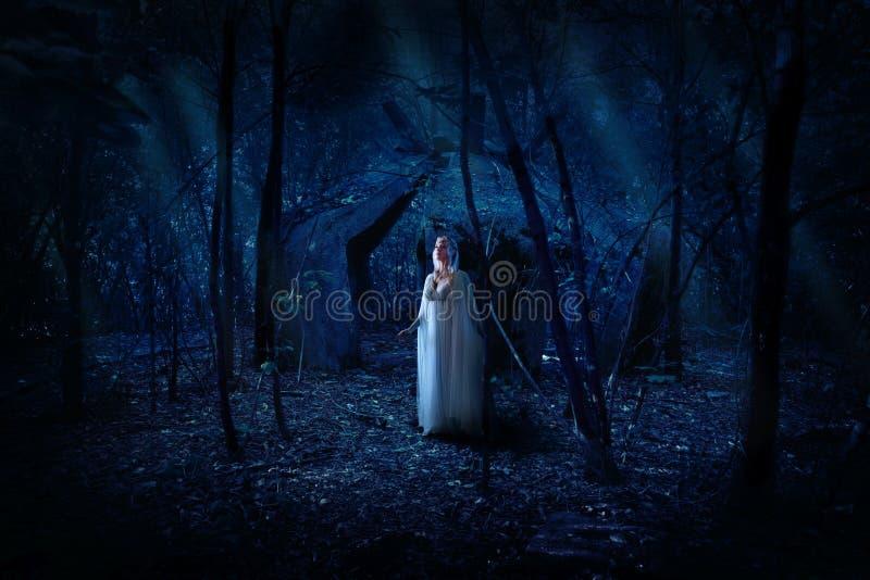 Девушка Elven в лесе ночи стоковые фотографии rf
