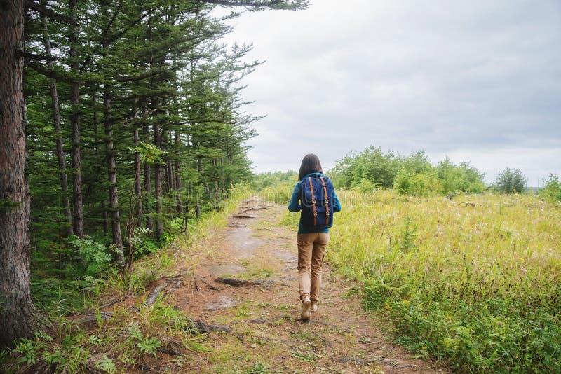 Девушка Hiker идя на тропу в лесе лета стоковое фото rf