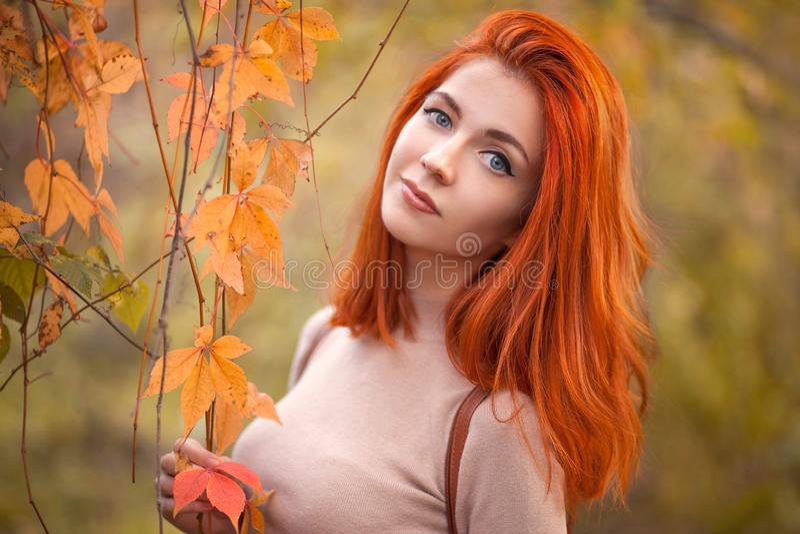 Девушка Redhead в осени стоковое изображение rf