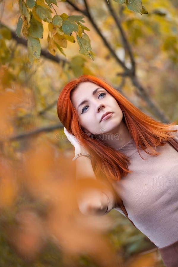 Девушка Redhead в осени стоковая фотография rf