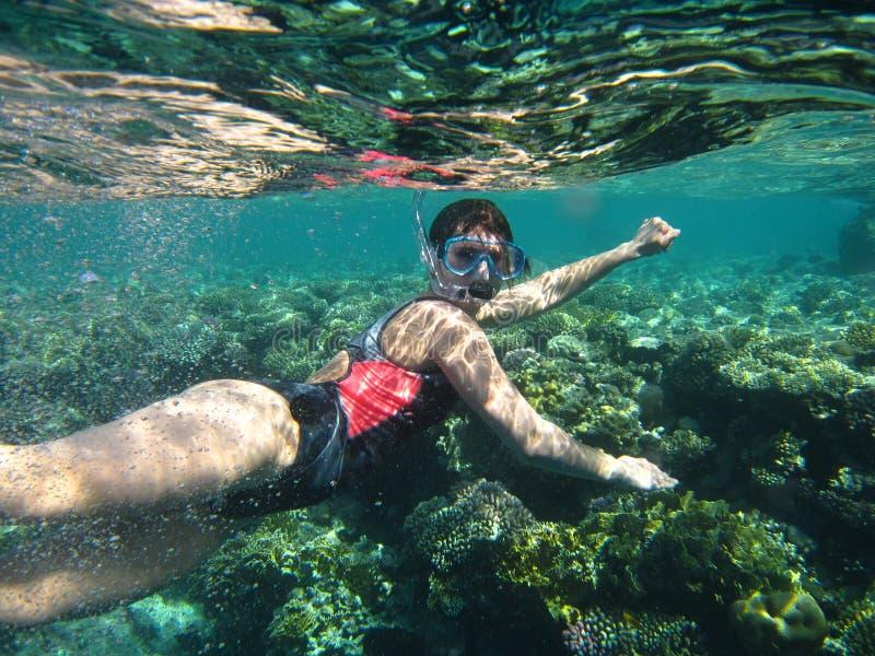 девушка snorkeling стоковая фотография rf