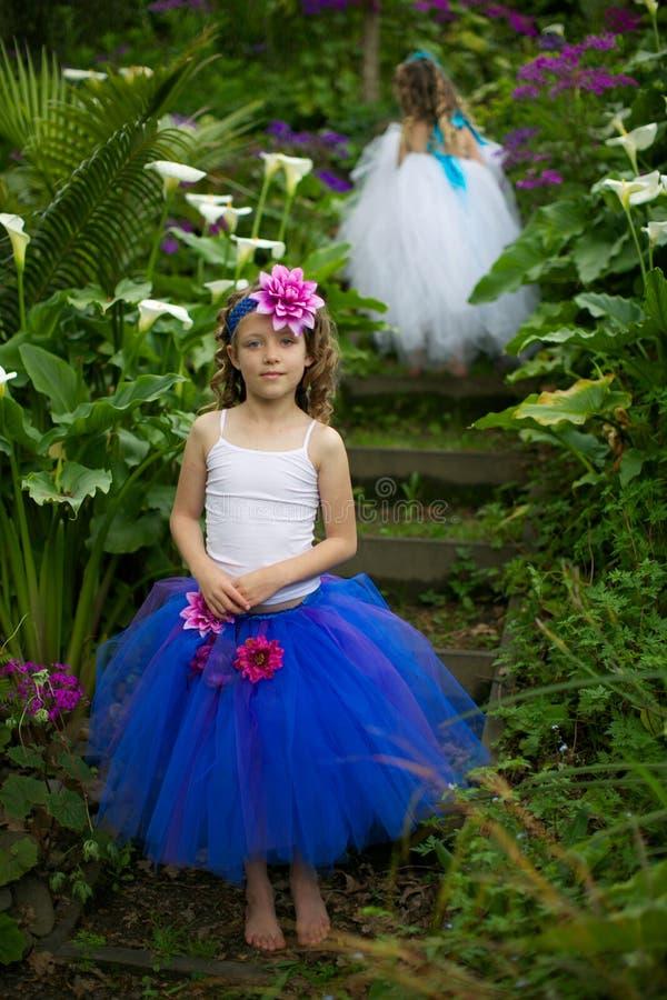 Девушки балетной пачки. стоковые изображения rf
