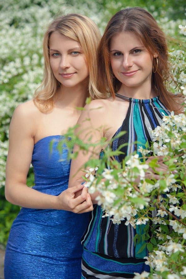 Download Девушки в парке стоковое фото. изображение насчитывающей outdoors - 41656718