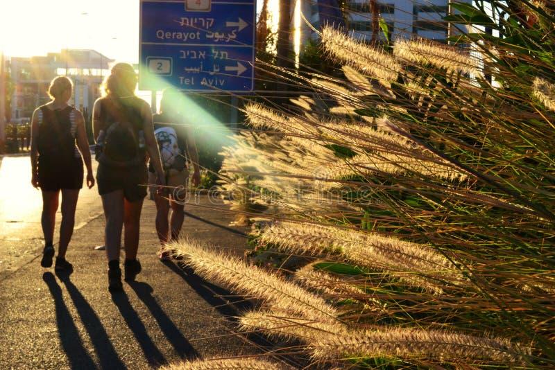Девушки идя через город Хайфы, городской на наборе солнца, с заводами и природой, Израиль стоковое изображение