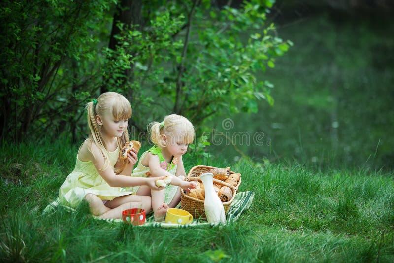 Девушки имеют пикник стоковое фото