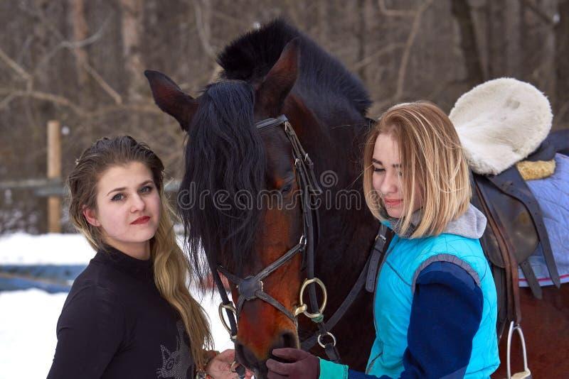 2 девушки с белыми волосами связывают с их лошадью Катание девушек законченное лошадь Пасмурный зимний день Конец-вверх стоковые фотографии rf