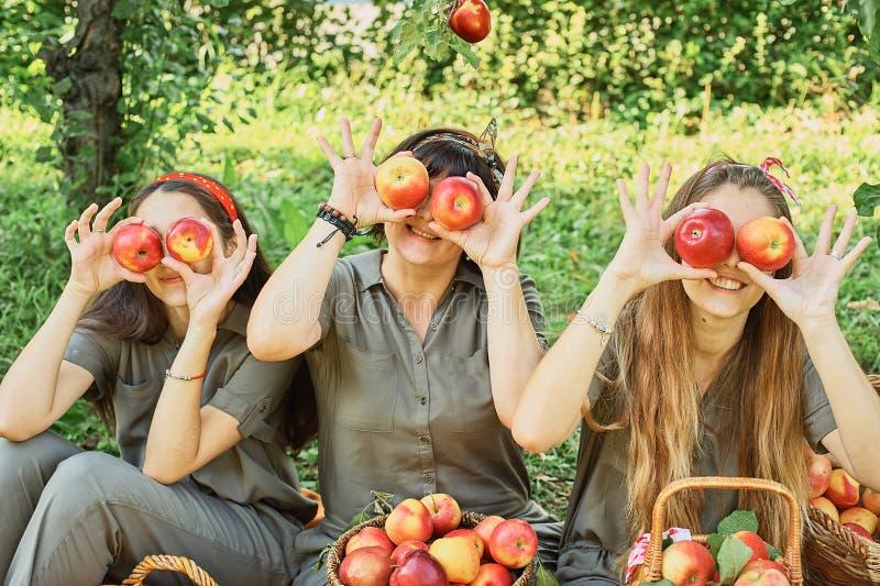 Девушки с Яблоком в яблоневом саде Красивые сестры с органическим Яблоком в саде o Сад, подростки стоковая фотография rf