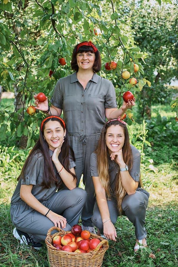 Девушки с Яблоком в яблоневом саде Красивые сестры с органическим Яблоком в саде o Сад, подростки стоковое изображение rf