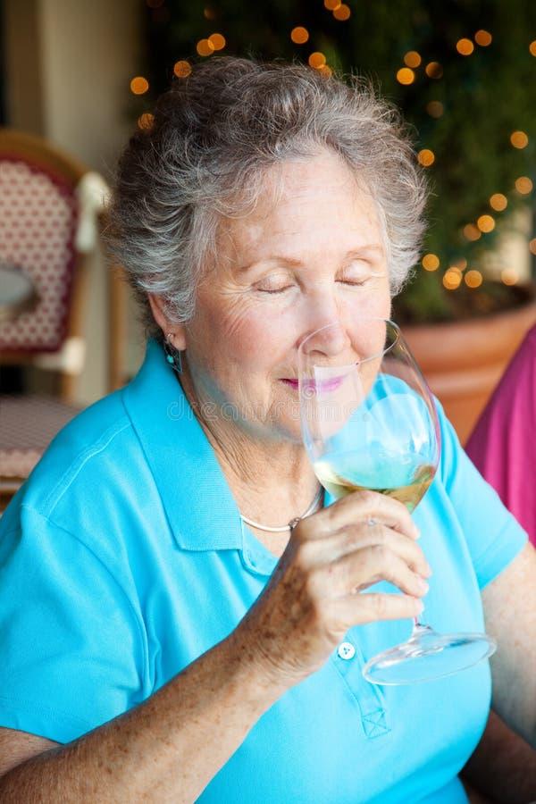 Дегустация вина - ароматность стоковые изображения rf